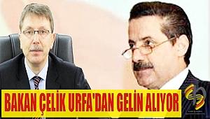 BAKAN ÇELİK URFA'DAN GELİN ALIYOR