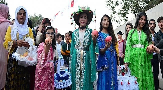 Suruç'ta 2. Nar Festivali düzenlendi