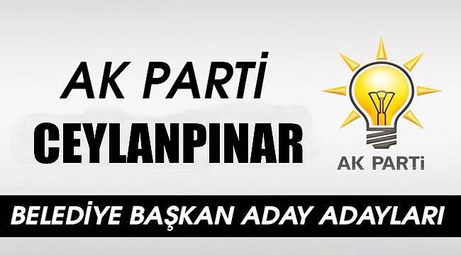 AK PartiCeylanpınar Belediye başkan aday adayı isim listesi