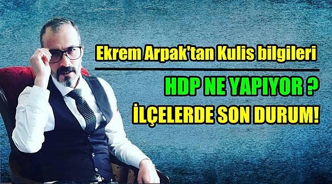 Ekrem Arpak'tan Kulis bilgileri... HDP NE YAPIYOR ? İLÇELERDE SON DURUM!