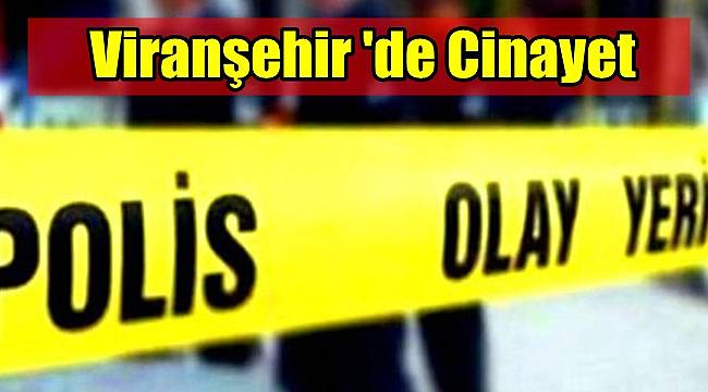 Viranşehir 'de Cinayet