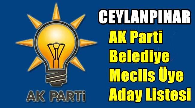 AK Parti Ceylanpınar ilçe Belediye Meclis Üye Aday Listesi