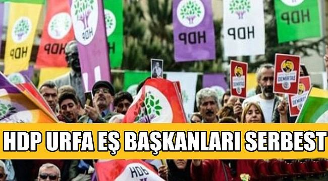 HDP URFA EŞ BAŞKANLARI SERBEST
