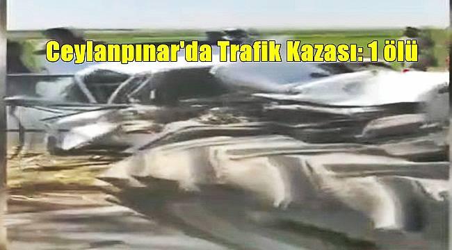 Ceylanpınar'da Trafik Kazası: 1 ölü
