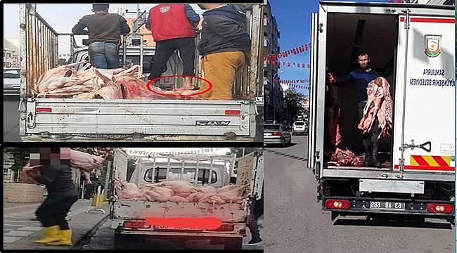 Viranşehir'de Ayaklar Altında Taşınan Etlere Büyükşehir El Attı