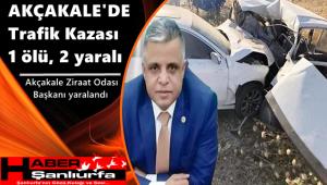 Akçakale'de Trafik Kazası: 1 ölü, 2 yaralı
