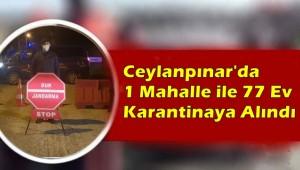 Ceylanpınar'da 1 Mahalle ile 77 Ev Karantinaya Alındı