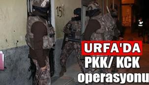 Şanlıurfa'da PKK/KCK Operasyonu: 8 Gözaltı