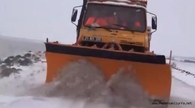 Şanlıurfa'da Bazı Yollar Kar Nedeniyle Ulaşıma Kapandı