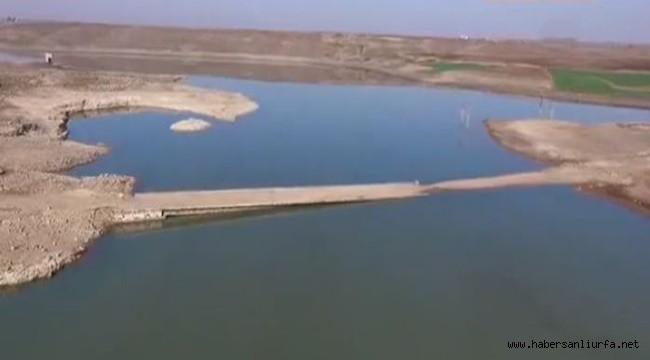 Siverek'te Barajdaki Suların Çekilmesiyle Köprü Gün Yüzüne Çıktı
