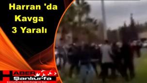 Harran 'da Kavga: 3 Yaralı