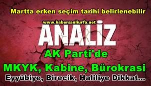 AK Parti'de MKYK, Kabine, Bürokrasi ve Erken Seçim