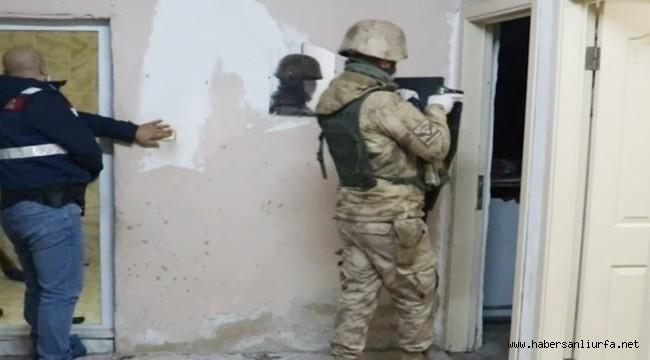 Şanlıurfa'da DEAŞ'a Operasyon 27 Gözaltı