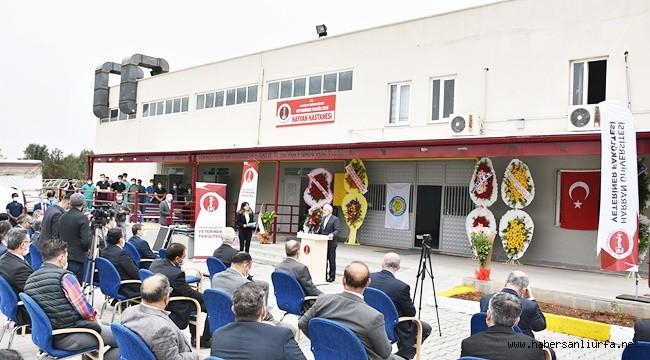 Şanlıurfa'nın Tam Teşekküllü Tek Hayvan Hastanesi Açıldı