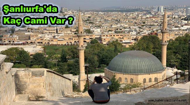 Şanlıurfa'da Kaç Cami Var ? TÜİK Açıkladı