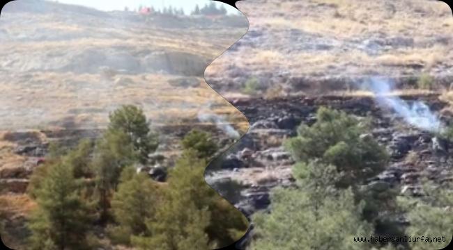 Türkiye'yi Sarsan Yangınlardan Urfa'da Nasibini aldı