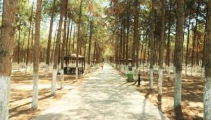 Akçakale Kent Parkı ve Mesire Alanı Açılıyor
