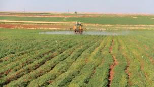 Siverek'li Çiftçiler : Tarlalarımızı Satsak Dahi Elektrik Borcunu Karşılamıyor